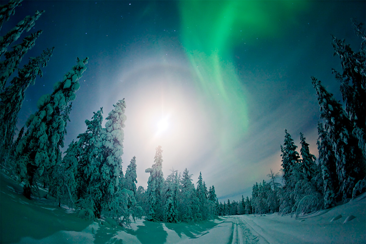 Northern lights Ylläs Lapland