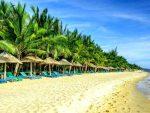 Курорты вьетнама для отдыха в январе – Вьетнам зимой 2019-2020. Отдых в декабре, январе, феврале